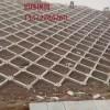 网格护坡模具制造使用 网格护坡模具厂家